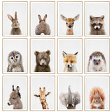 Animal Poster Wall Pictures For Children Bedroom Cute Rabbit Painting Home Accessories Poster Decor Modern Wall Charts Canvas