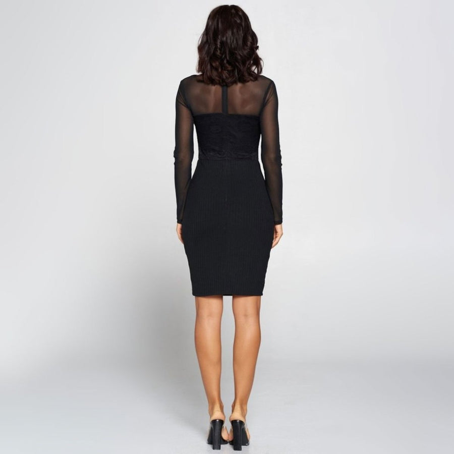 Long Sleeve Mesh Dress - Popstry