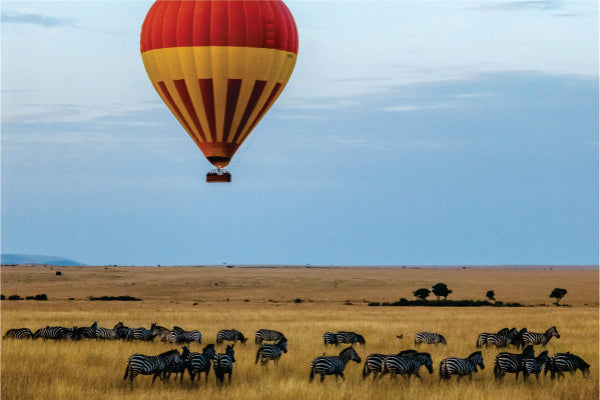 A red and yellow hot air balloon gliding over Masai Mara field with views of zebras