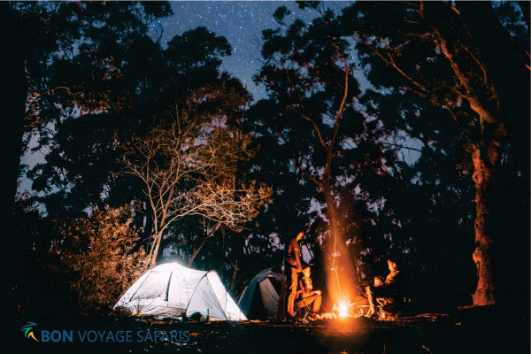 Small group of people near bonfire at nighttime during 3 days cheap group camping tours