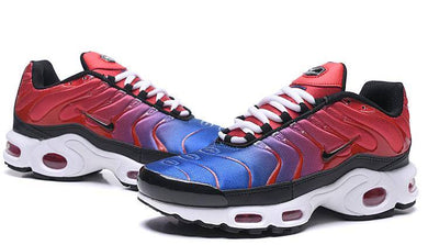 Air Max Plus TN degrad