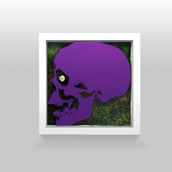 "Ready-to-Hang framed contemporary artwork combining Plexiglass in Purple mirror, real preserved moss plant and/or flowers. Framed in a 3"" deep White wooden floater, protective clear plexi"