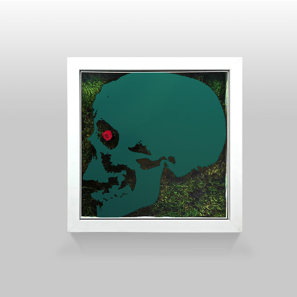 "Ready-to-Hang framed contemporary artwork combining Plexiglass in Turquoise mirror, real preserved moss plant and/or flowers. Framed in a 3"" deep White wooden floater, protective clear plexi."