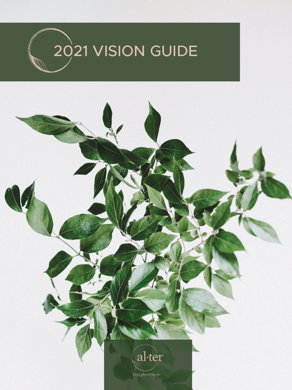 2021 Vision Goal Guide