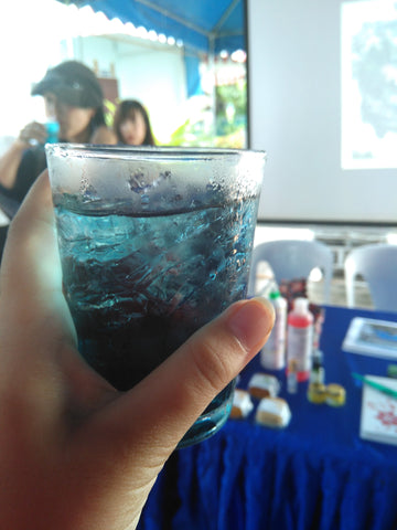 Absolute Best Boba Flavors of All Time - Butterfly Pea Tea