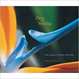 Zen of Seeing - Rajshree Sarabhai