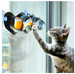 Pets Cat Toys Window Mounted Track Ball Toy For Cats Interactive Track Ball Toy Cat Practical Suction Cup Track Ball Pet Accessories Cat Tennis Sucker Toy - Center Of Treasures
