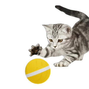 Motion Ball For Pets Active Jump Ball Dog Cat Toy USB Electric Pet Ball LED Rolling Flash Elastic Ball Cat Automatic Roll Fun Interactive Toy Waterproof - Center Of Treasures