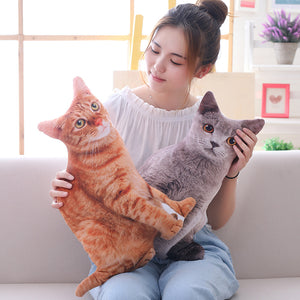 Cat Pillows Soft Stuffed Animals Cushion Sofa Decor Cartoon Simulation Plush Toys 50cm for Children Kids Gift - Center Of Treasures