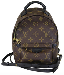 Monogram Palm Springs Mini Backpack
