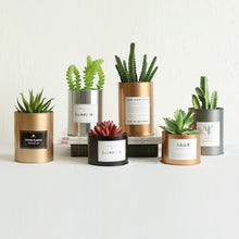 Load image into Gallery viewer, Minimalist Metal Planter Cans - Succelent Planter