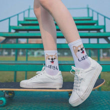 Load image into Gallery viewer, Buy Rawr - Cute Harajuku Socks Range (Nyan Cat & more!) Socks online, best prices, buy now online at www.GrabThisNow.co