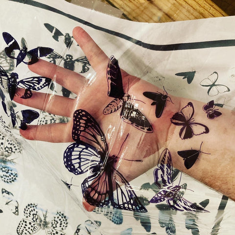 transfer on plastic for cyanotype printed butterfly design