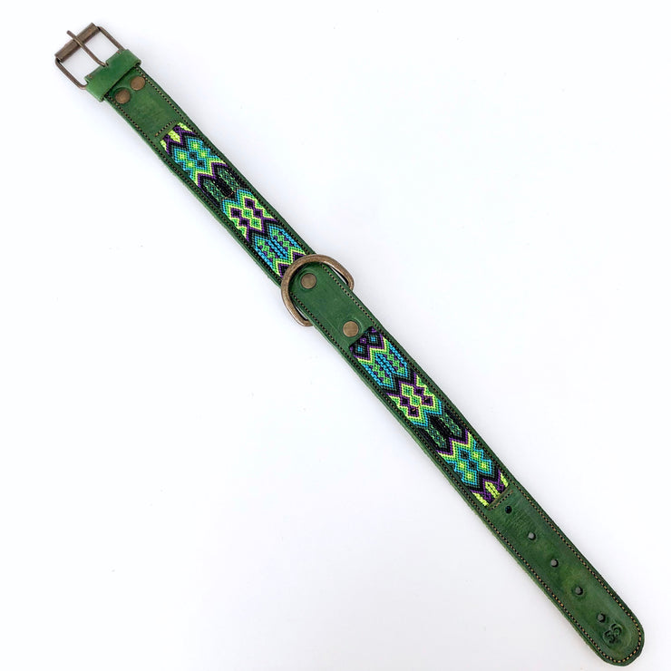 Dog Collar with Multicolor Band