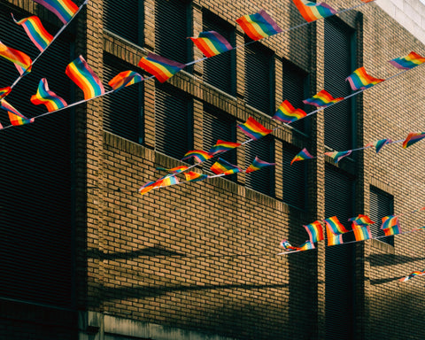 rainbow flag bunting strung across a building, image by Karl Bewick on unsplash