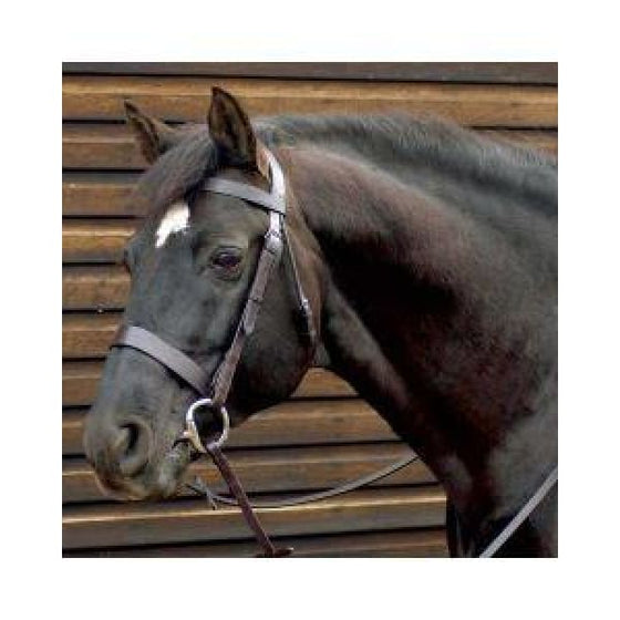 Caldene Wide Plain Snaffle Bridle with Reins - Bridle
