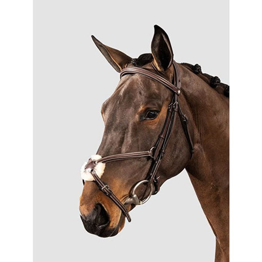 Equiline Leather Bridle & Reins with Mexican Noseband - Bridle