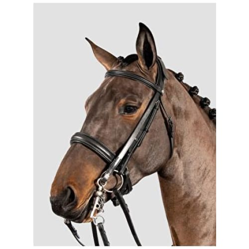Equiline Leather Double Bridle& Double Reins - Double Bridle