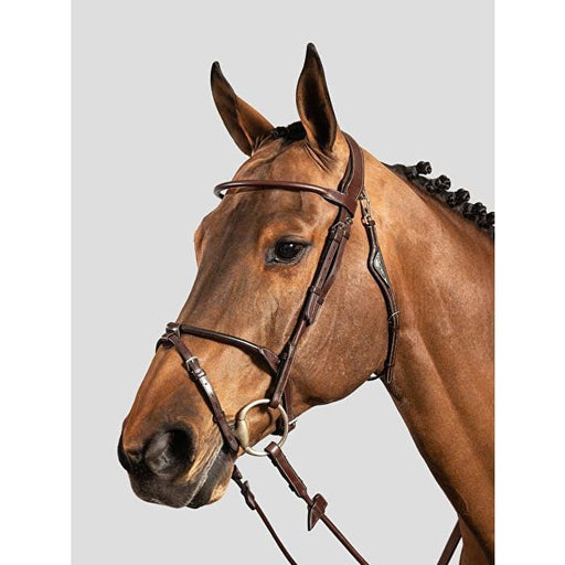 Equiline Rolled Leather Bridle & Reins - Bridle