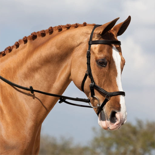 Rambo Micklem Competition Bridle - Bridle
