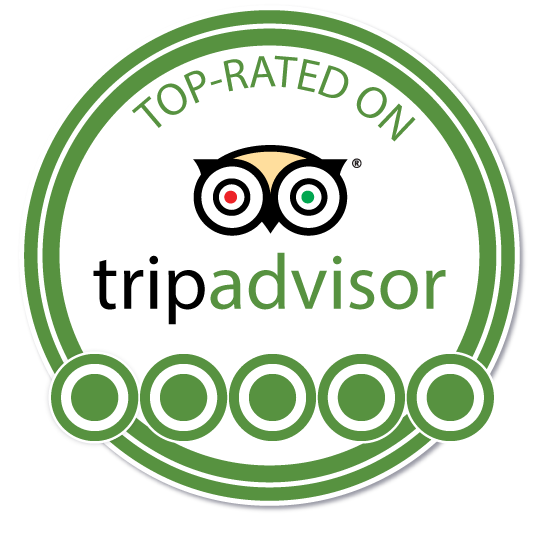 go to trip advisor