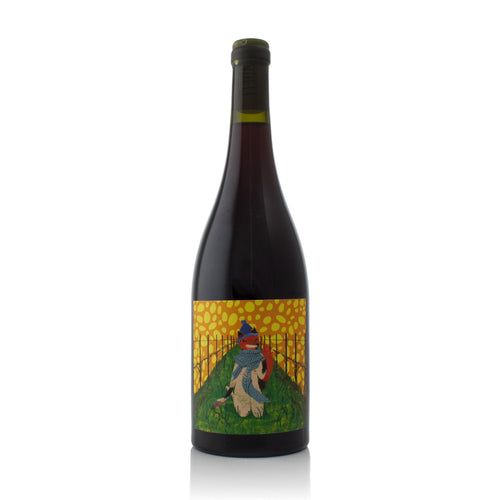 Organic Wine New Zealand Pinot Noir Natural Wine