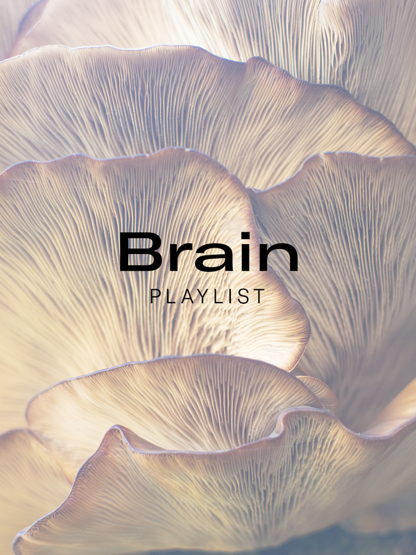 The Brain Playlist