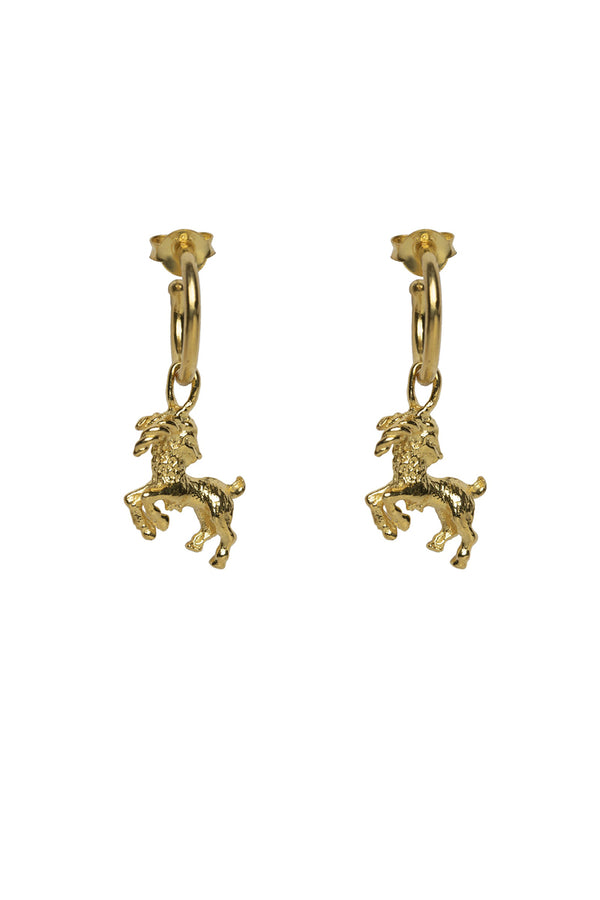 Capricorn Zodiac Hoop Earrings