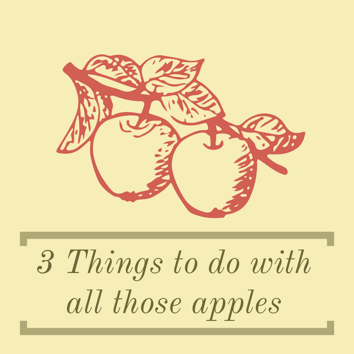 3 Things to Do with All Those Apples