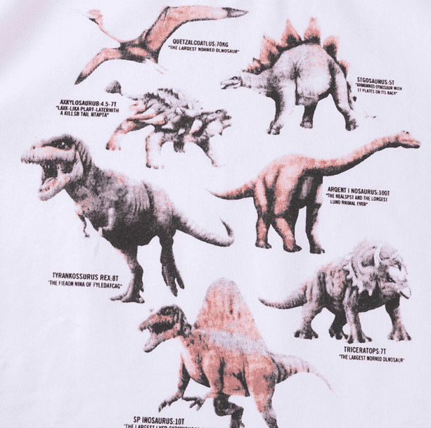 Age Of Dinosaurs Tee - All Things Rainbow