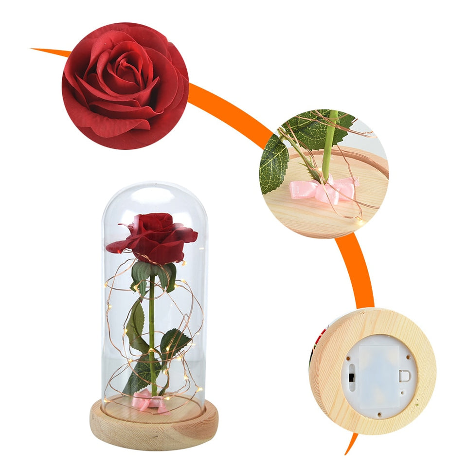 Valentine's LED Beauty And Forever Rose