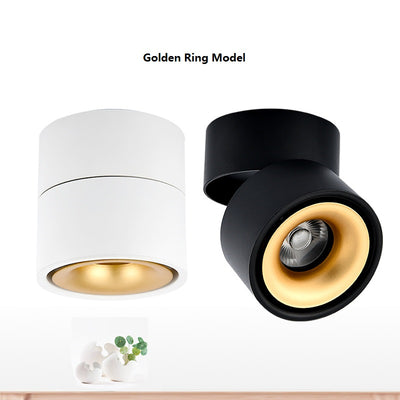 LED Surface Mounted Ceiling Light Foldable and 360 Degree Rotatable COB Background Light-Ceiling Lights-Raypom