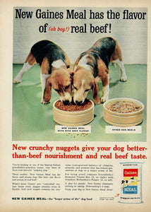 1950's Gaines Meal Dog Food Advertisement - Animal Lover Gift - Living Room Decoration