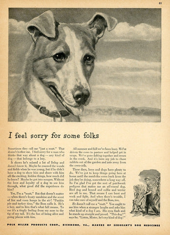 1960's Sergeant's Dog Medicines Advertisement - Living Room Decor - Gift For Veterinarian