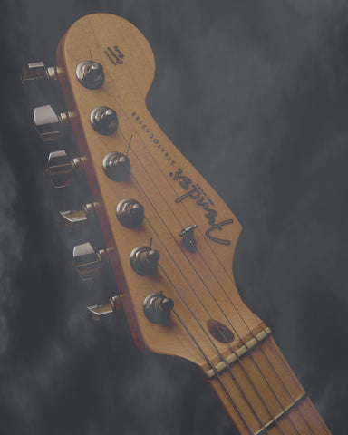 Fender Stratocaster Photograph - 8X10 Digital Download Patent