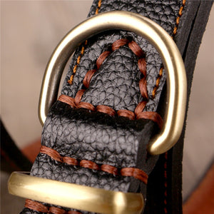 Genuine Leather Dog Collar Neck Buckle - thar-artefacts