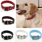 pet safety leather belt with neck strap - thar-artefacts