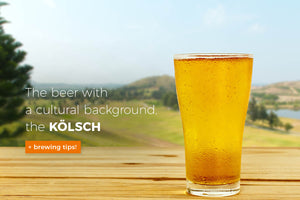 A bit ale and a bit lager, the Kölsch