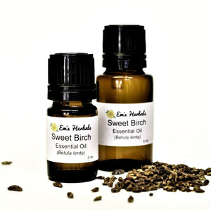 Birch, Sweet (Betula lenta) Essential Oil, Wild Harvested - emsherbals