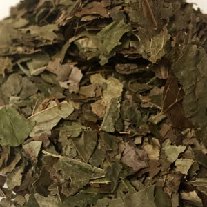 Witch Hazel (Hammamelis virginiana) Leaf, Cut and Sifted, Certified Organic