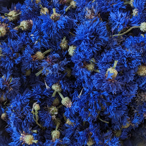 Blue Cornflowers (Centaurea cyanus), Whole, Certified Organic, PNW Grown