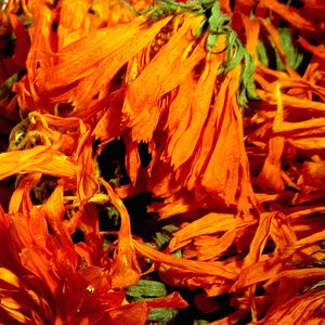 Calendula (Calendula officinalis) Whole Flowers, Certified Organic, Premium Harvest, Locally Grown