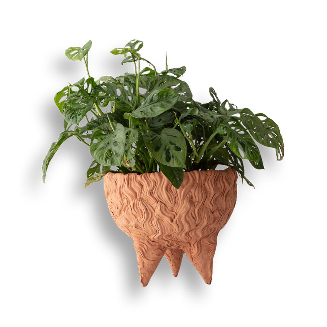 Hairy Bowl Tripod Planter
