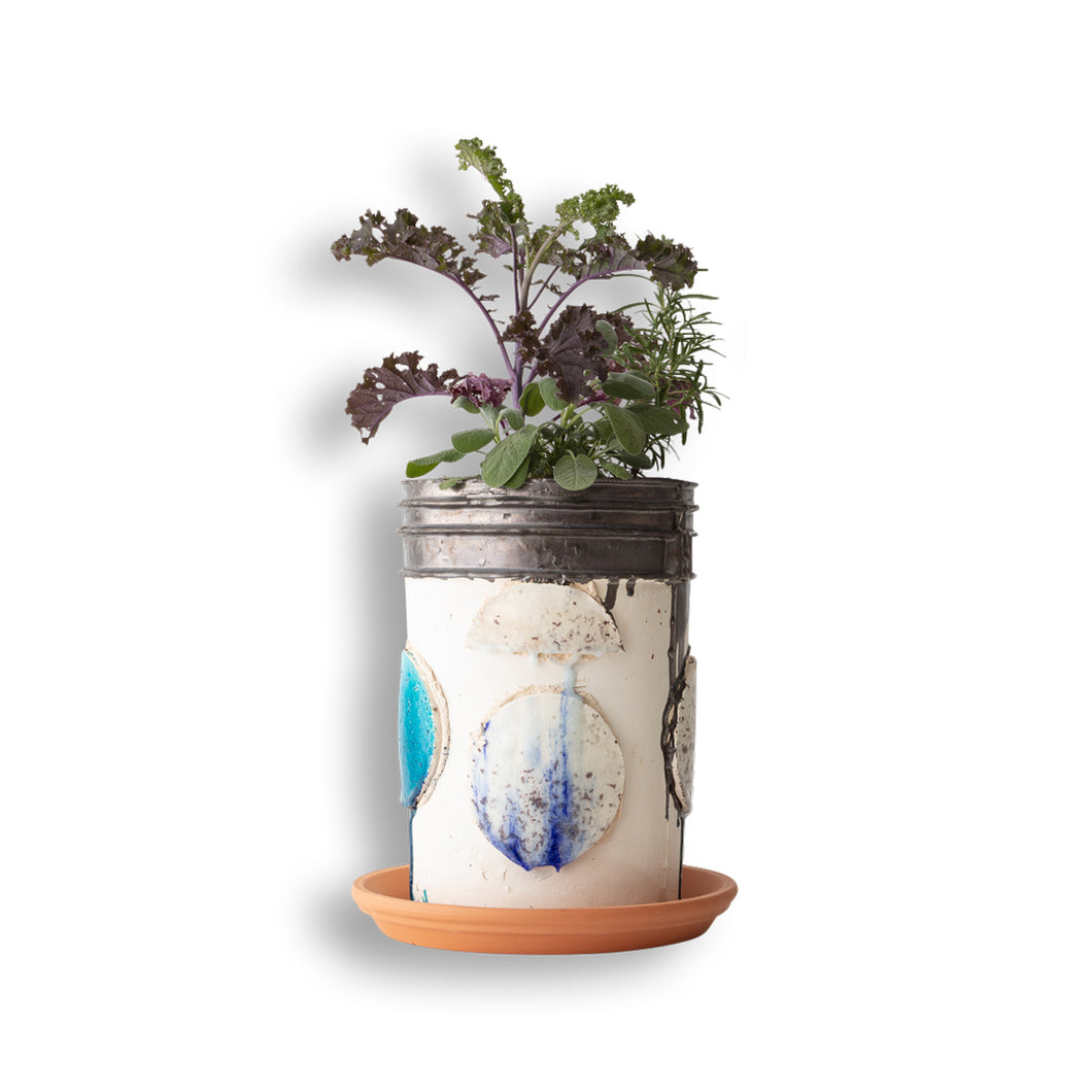 Bucket with Small Plants and Greens