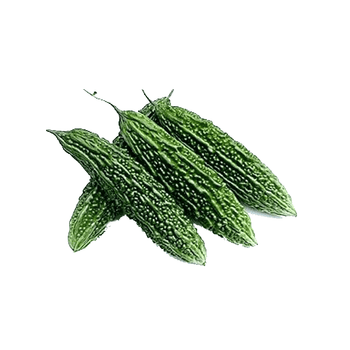 Indian BitterMelon (Karela)