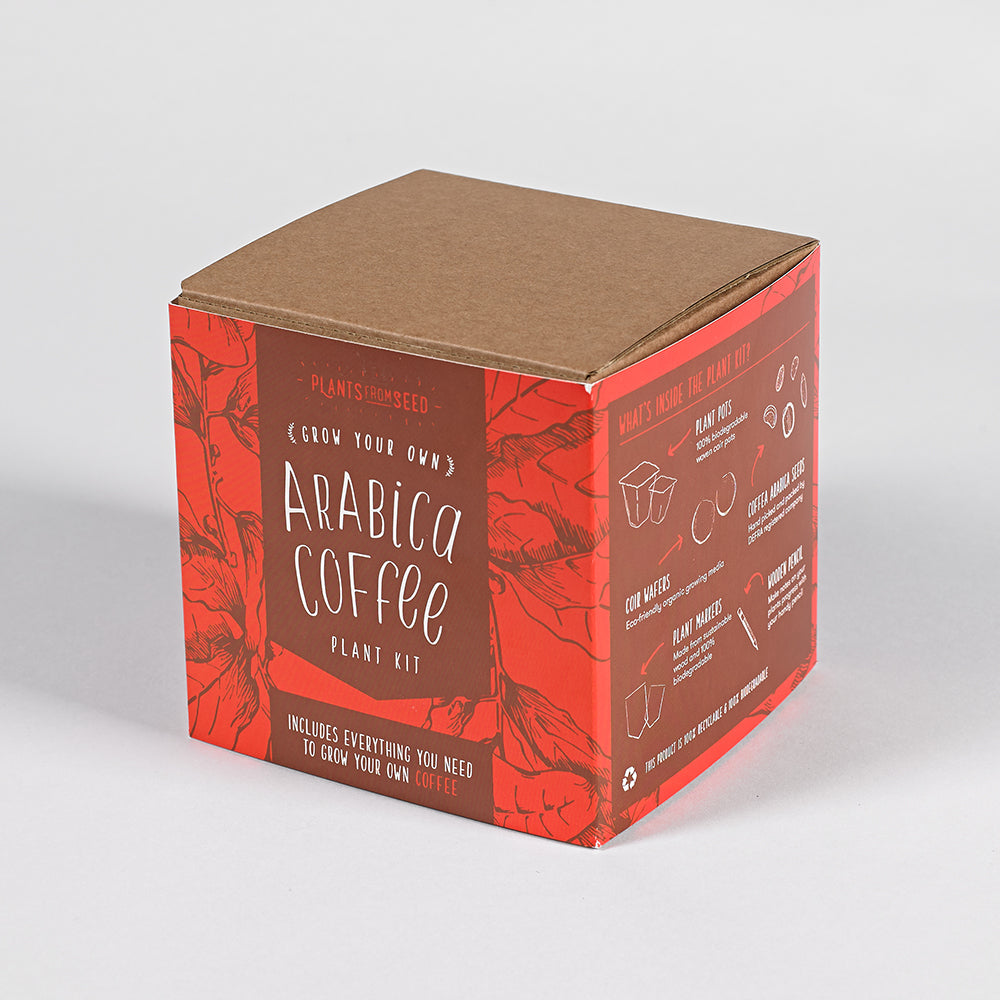 Grow Your Own Arabica Coffee Box