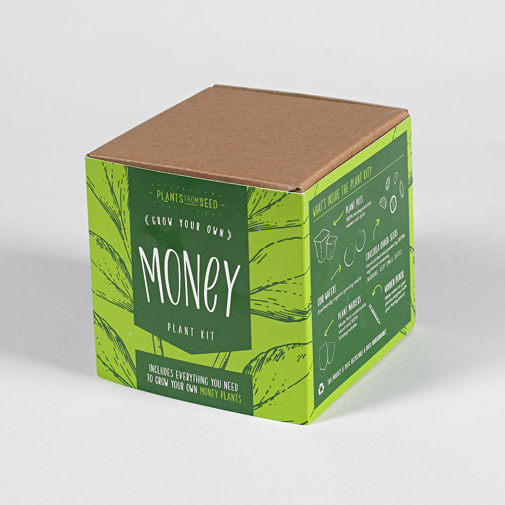 Grow Your Own Money (Plant) Kit