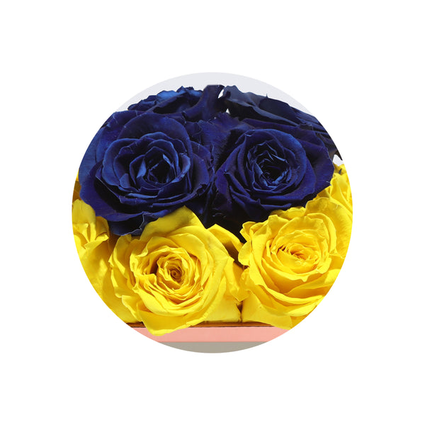 Yellow & Blue Small Luxury Preserved Roses