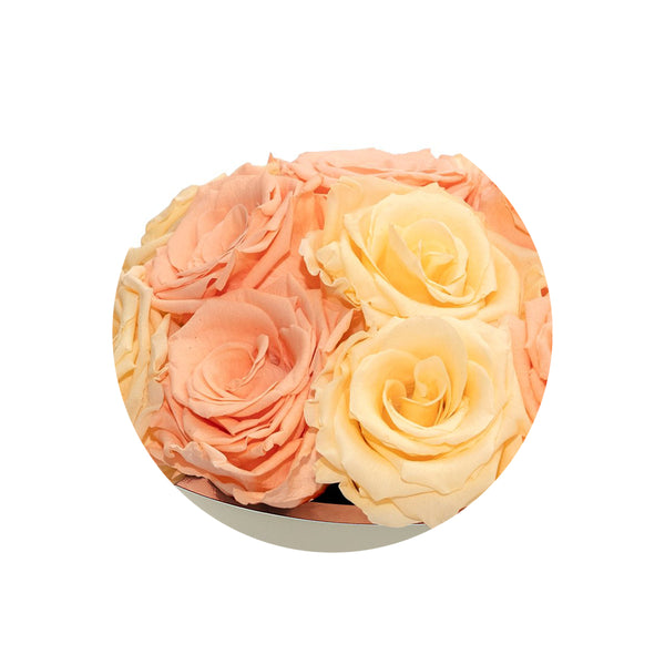 Bella Round Vintage & Yellow Clair Luxury Preserved Roses