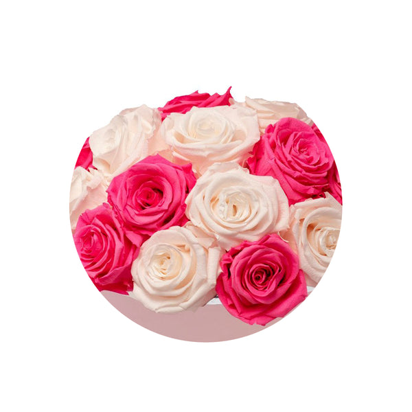 Fuschia and Baby Pink Luxury Preserved Roses